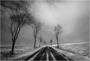 la neige-1213