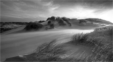 Vent dans les dunes   , GERARD ROYER-2