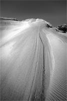 dune3-0804